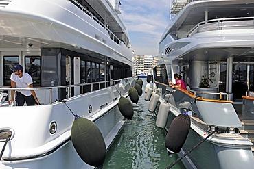 Mooring, boats, marina, Ibiza, Pityuses, Balearic Island, Spain, Europe