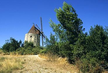 Moulin de Daudet windmill, Provence, France, Europe