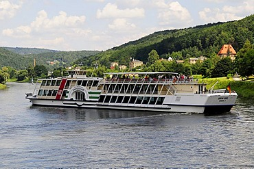 Motorboat MS Graefin Cosel on the Elbe River, built in 1994, Dresden, Saxony, Germany, Europe