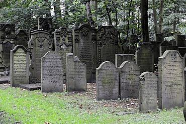Graves, Jewish cemetery, Hanseatic City of Hamburg, Germany, Europe