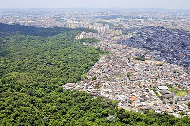 Aerial view of a Favela, slum area on the outskirts of Sao Paulo, town invading the rain forest, Sao Paulo, Brazil, South America