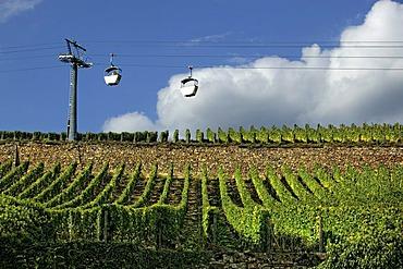 Cable car in Ruedesheim am Rhein, Middle Rhine Valley, UNESCO World Heritage Site, Rhineland-Palatinate, Germany, Europe