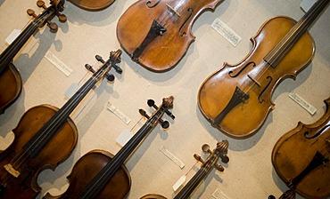 Violins, Haus Kemnade castle and museum, Hattingen, North Rhine-Westphalia, Germany, Europe