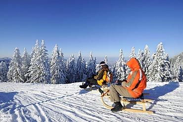 Sledders on Mt. Wallenberg, Bavarian Alps, Upper Bavaria, Bavaria, Germany, Europe