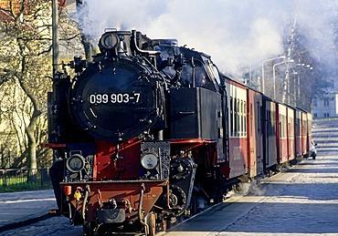 Schmalspurbahn Molli, a narrow-gauge railway, historic steam train, Bad Doberan, Baltic Sea, Mecklenburg-Western Pomerania, Germany, Europe