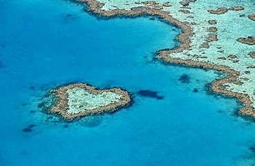 Aerial view of the ocean floor, Heart Reef, heart-shaped reef, Great Barrier Reef World Heritage Area, Great Barrier Reef, UNESCO World Heritage Site, Queensland, South Pacific, Australia