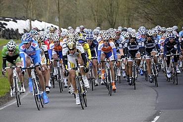 Rund um Koeln, cycle race, peloton in Unterthal, Kuerten, Rheinisch-Bergisch Kreis district, North Rhine-Westphalia, Germany, Europe