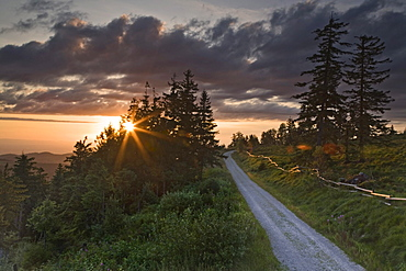 Sunset at the hiking trail around Schliffkopf mountain in the Black Forest, Baden-Wuerttemberg, Germany, Europe