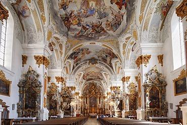 Studienkirche Mariae Himmelfahrt study church, Dillingen an der Donau, Donauried region, Swabia, Bavaria, Germany, Europe