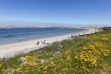Beach near Murrisk, Clew Bay, County Mayo, Connacht province, Republic of Ireland, Europe