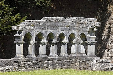Remains of the cloister, Cong Abbey, County Mayo, Connacht, Republic of Ireland, Europe