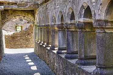 Cloister, Ross Abbey near Headford, County Galway, Connacht, Republic of Ireland, Europe