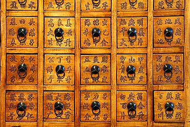 Detail of a Chinese pharmacy cabinet, from 1829-1850, Villa & Ambiente, Im Weller 28, Nuremberg, Middle Franconia, Bavaria Germany, Europe