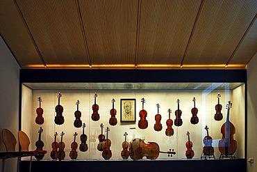 Exhibition room, display case with string instruments, Geigenbaumuseum violin museum, Ballenhausgasse 3, Mittenwald, Upper Bavaria, Bavaria, Germany, Europe