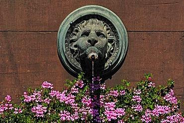 Lion head spouting water on the Grossherzog-Ludwig-Denkmal Brunnen memorial fountain, marketolace, Karlsruhe, Baden-Wuerttemberg, Germany, Europe
