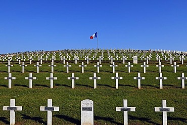 Crosses in the military cemetery on the Blutberg mountain, with a French flag, Sigolsheim, Alsace, France, Europe