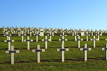 Crosses in the military cemetery on the Blutberg mountain, Sigolsheim, Alsace, France, Europe