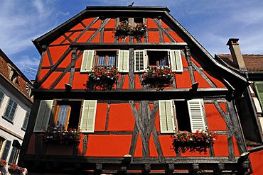 Old Alsatian half-timbered facade, 1 Rue de Juifs, Ribeauville, Alsace, France, Europe