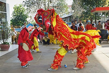 Dragon dance, Chinese New Year, Kampong Thom, Cambodia, Indochina, Southeast Asia