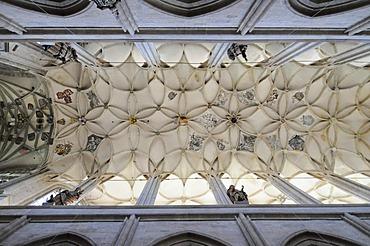 Interior view, cross vault, St. Barbara Church, Kutna Hora, Czech Republic, Europa