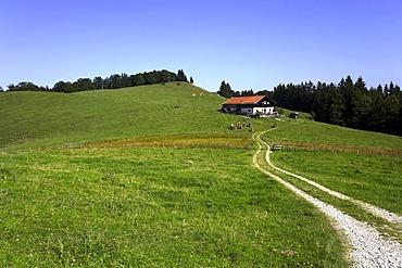 Roadway to an Alpine cottage, Chiemgau, Upper Bavaria, Germany, Europe