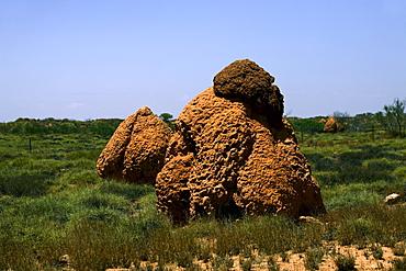 Giant ant hill or termite nest, Western Australia, Australia