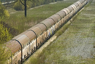 Old wagons on a siding, some are covered with graffiti