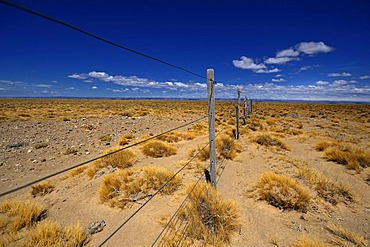 Fence in a steppe landscape, Monte Leon National Park, Rio Gallegos, Patagonia, Argentina, South America