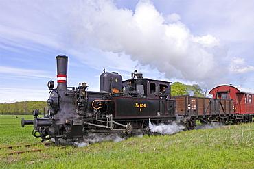 Angeln steam railway, Schlei, Schleswig-Holstein, Germany, Europe
