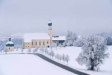 Church of Wilparting in a winter landscape, winterwonderland with hoar frost on Mt. Irschenberg, Bavaria, Germany, Europe