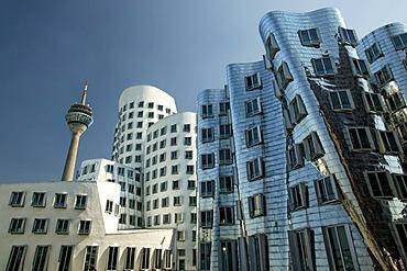 Neuer Zollhof buildings by Frank Gehry, Dusseldorf, North Rhine-Westphalia, Germany, Europe