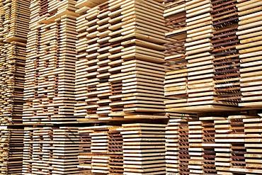 Logging, lumber mill, Springfield, New Hampshire, New England, USA