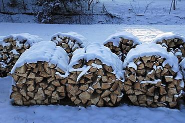 Snow-covered woodpile, Eckental, Middle Franconia, Bavaria, Germany, Europe