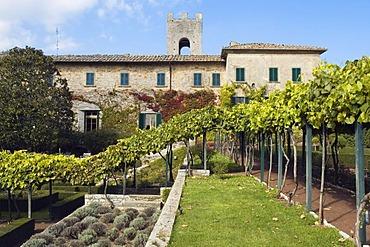Castle park of a winery, Badia di Coltibuono, Chianti, Tuscany, Italy, Europe