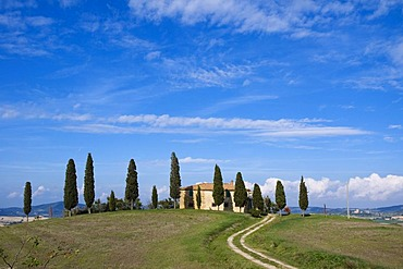Country house, cypress-lined road, San Quirico d'Orcia, Tuscany, Italy, Europe
