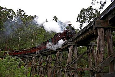 Puffing Billy Railway crossing the Trestle Bridge, built in 1899, The Dandenong Ranges, Victoria, Australia