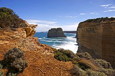 Limestone rock stack, vegetation and coastal cliffs, Great Ocean Road, Port Campbell National Park, Victoria, Australia