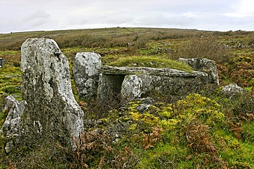 Neolithic wedge tomb, Parknabinnia, The Burren, County Clare, Republic of Ireland, Europe