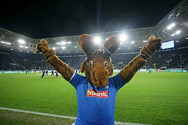 Hoffi, mascot of the Bundesliga soccer team TSG 1899 Hoffenheim in the Rhein-Neckar-Arena, Sinsheim, Baden-Wuerttemberg, Germany, Europe