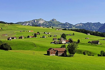 Landscape with farmhouses, the Alpstein range at back, canton of Appenzell, Switzerland, Europe