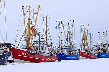 Fishing boats in the frozen harbour of Friedrichskoog on the North Sea coast in winter, Dithmarschen district, Schleswig-Holstein, Germany, Europe