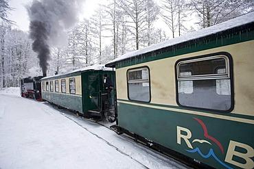 Rasender Roland' narrow gauge railway, Ruegen Island, Mecklenburg-Western Pomerania, Germany, Europe