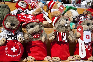 Plush toy Marmots, dressed in tradiotional Swiss costume, souvenir, Davos, Grisons, Switzerland, Europe