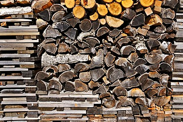 Stack of wood with birch and beech wood