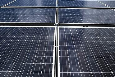 Polycrystalline silicon solar cells in a solar module