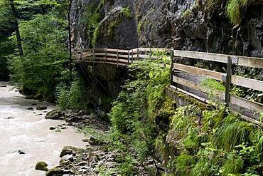 Walkway through the Rappenlochschlucht gorge, Guetle, Dornbirn, Vorarlberg, Austria, Europe