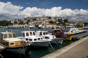 Port and historic town, town of marble, Vrsar, Istria, Croatia, Europe