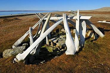 Historic Inuit house from the Thule Culture made out of whale bones, Resolute Bay, Cornwallis Island, Northwest Passage, Nunavut, Canada, Arctic