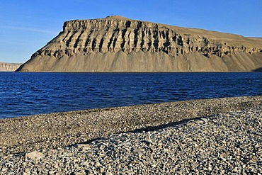 Arctic tundra and rocky beach at Maxwell Bay, Devon Island, Northwest Passage, Nunavut, Canada, Arctic
