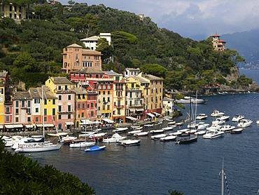 View of Portofino, harbor, Riviera, Liguria, Italy, Europe